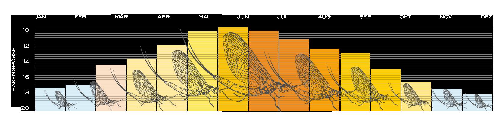 Eintagsfliege Jahresverlauf Fliegenfischerschule